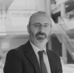 Professor Ignacio Romero